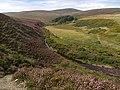 Druidale . Isle of Man. - geograph.org.uk - 40844.jpg