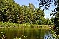 Dubechne Starovyzhivskyi Volynska-Dubechnivskyi park architecture monument-view near lake-2.jpg
