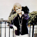 Dusty Springfield (1966).png