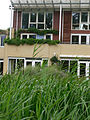 E.V.A. LanxmeerHouse&Wetland2 2009.jpg