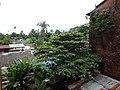 East Yankin, Yangon, Myanmar (Burma) - panoramio (3).jpg