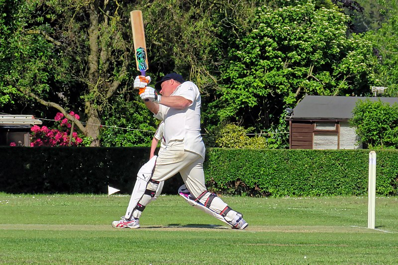 File:Eastons CC v. Chappel and Wakes Colne CC at Little Easton, Essex, England 29.jpg