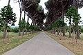 El Escorial (36385938680).jpg