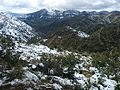 El Main in snow.jpg