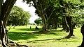 El Salvador - Corinto Golf Club, Hole 14 - panoramio.jpg
