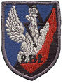 Emblemat 2 brygady lacznosci.jpg