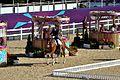 Equestrian (7937473096).jpg
