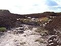 Erosion control, Kinder Scout - geograph.org.uk - 211323.jpg