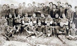1894 VFA season