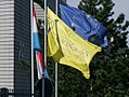 European-school-flag.jpg