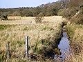 Exbury River - geograph.org.uk - 387072.jpg