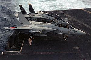 Carrier Air Wing Eight - Tomcats of VF-41 and VF-84 during Operation Eagle Claw, 1980.