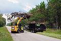 FEMA - 38847 - Debris Cleanup in Nassau Co..jpg