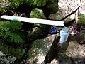 FLT M01 19.24 mi - Beck Hollow Lean-to piped spring - panoramio.jpg