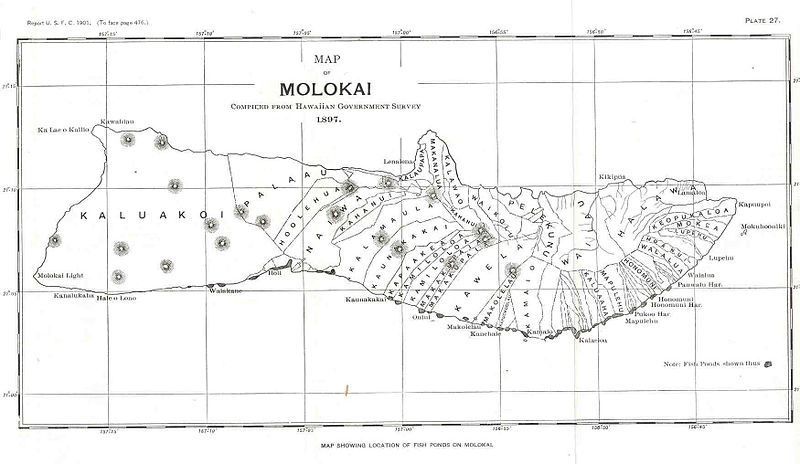 File:FMIB 33820 Map of Molokai.jpeg