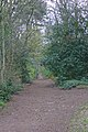 FP2 Montgomery Hill to Wirral UD boundary 2.jpg