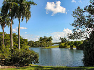 English: View of Fairchild Tropical Gardens - ...