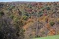 Fall Foliage - panoramio (6).jpg