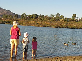 Lake Murray (California) - A family feed the ducks at Lake Murray
