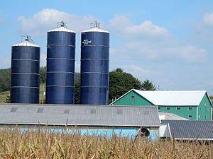 Eldred Township, Schuylkill County, Pennsylvania - Farm on Zion Church Rd., Eldred Township.