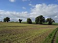 Farmland, Straight Soley - geograph.org.uk - 257563.jpg