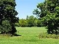 Farmland near Avoca Farm, Whitchurch-on-Thames - geograph.org.uk - 26660.jpg