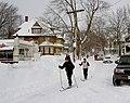 Feb 2013 blizzard 5886.JPG