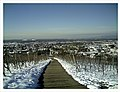 February Minus 10 Grad Celsius Masterview Denzlingen Kaiserstuhl La France Germany - Magic Rhine Valley Photography 2013 - panoramio.jpg