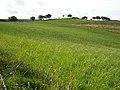 Fields Near Over Enoch - geograph.org.uk - 979403.jpg