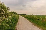 Fietspad om Langweerderwielen (Langwarder Wielen). Oostkant 02.jpg