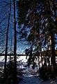 Finland 2017-02-25 (32308801294).jpg