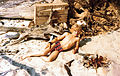 Finn Berens, 13 years old, beach Faxeladeplads 1977.jpg