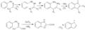 Fischer indole synthesis scheme.png