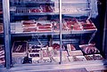 Fish store's showcase, Tokyo (1967-05-04 by Roger W).jpg