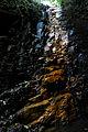 Flickr - ggallice - catarata Reserva Monte Verde.jpg
