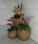 Flower pot at Airport N. Station in Guangzhou Metro 2.jpg