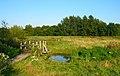 Footbridge, Fishbourne Meadows - geograph.org.uk - 523426.jpg