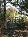 Footbridge - geograph.org.uk - 1509481.jpg