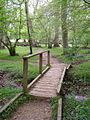Footbridge in Ivy Wood, New Forest - geograph.org.uk - 170770.jpg