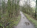 Footpath to Willow Lane - geograph.org.uk - 1140100.jpg