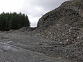 Forestry quarry near the Arch - geograph.org.uk - 874847.jpg