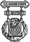 Former USMC Basic Badge.png