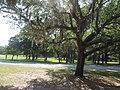 Fort Raleigh National Historic Site, Manteo, Roanoke Island, North Carolina (14273980077).jpg