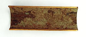 Fouling - Condenser tube with residues of biofouling (cut open)