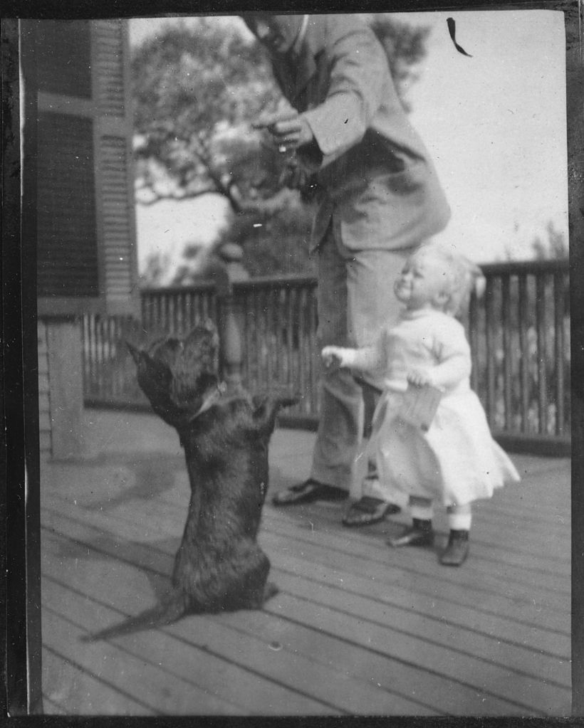 File Franklin D Roosevelt With Anna Dog Duffy In