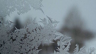 Frost on Window.jpg