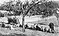 Fsg wickersdorf ak zeichenunterricht 1908.jpg