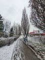 Fußweg Schnee Hof 20191213 03.jpg