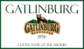 GATLINBURG TN PNG.png