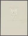Galathea strigosa - - Print - Iconographia Zoologica - Special Collections University of Amsterdam - UBAINV0274 096 14 0006.tif